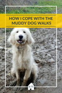 Do you have a dog, and love getting out for dog walks. However the downside of having a dog means you have to be out dog walking in all weathers. Take a look at our grooming routine, and how I cope with muddy dog walks.