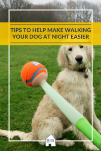 Do you hate walking your dog at night? Then take a look at these tips for walking your dog at night and see if they help you. The dogs don't care you are walking them in the dark, but we do!