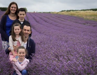 Lordington Lavender Fields in West Sussex. Great for stunning photos, and a photographers dream! Perfect for family photos, and stunning lavender fields for a great back drop to photos