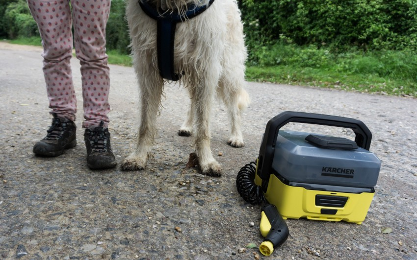 Karcher Portable Cleaner Review